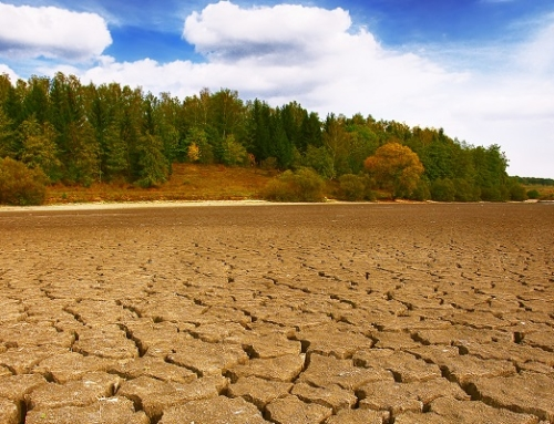La gestión estratégica de activos ante el cambio climático